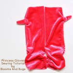 Fingerless Princess Gloves