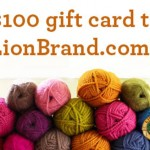 Lion Brand Giveaway Prize