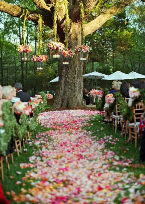 Wedding decorations archives favecrafts outdoor oasis junglespirit Image collections