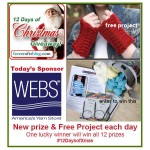WEBS-12-Days-Christmas-Promo