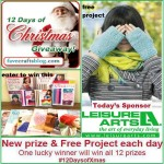 LeisureArts-12-Days-Christmas-Promo