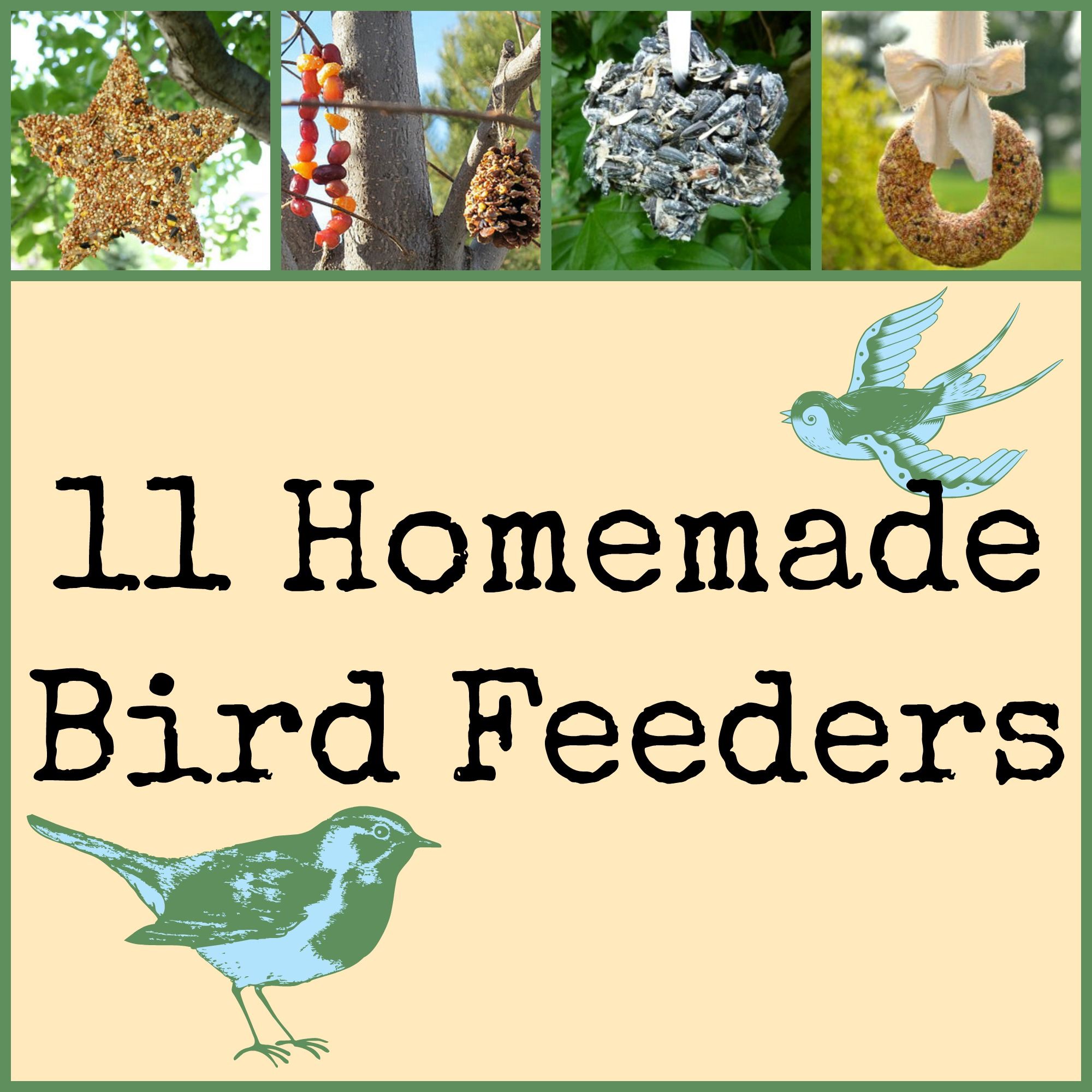 11 Homemade Bird Feeders