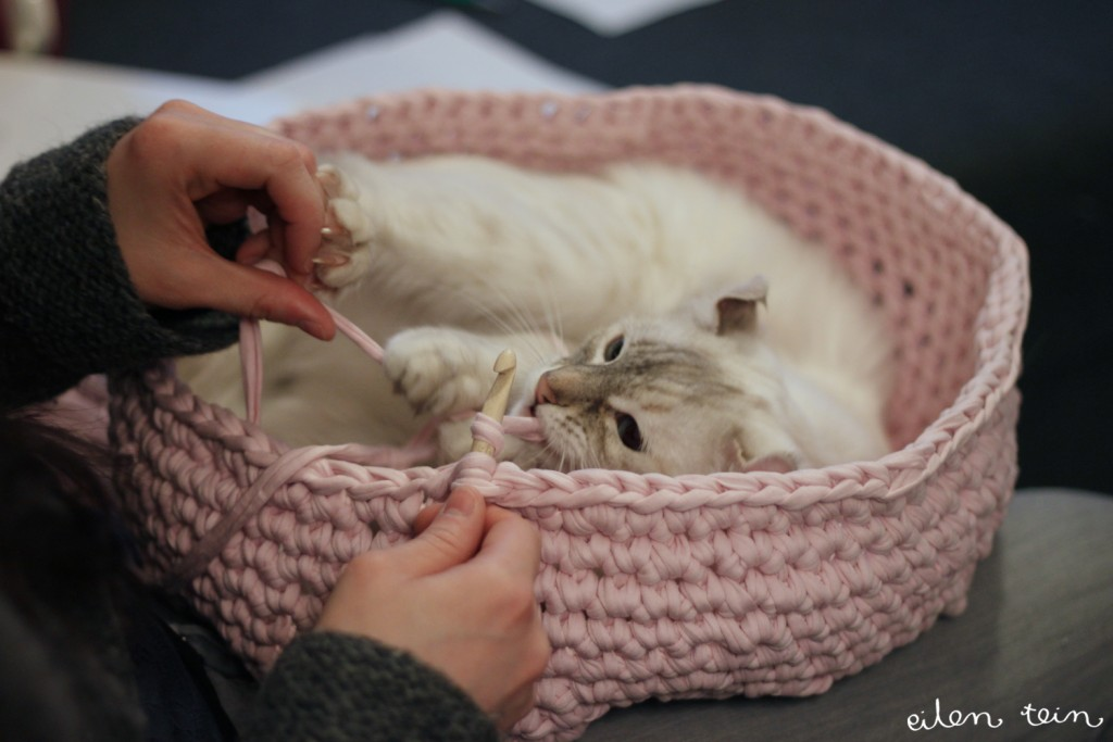 diy-cat-bed-crochet