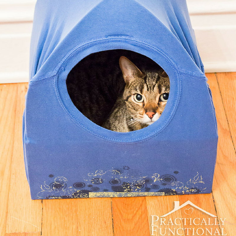 how to make a homemade cat house