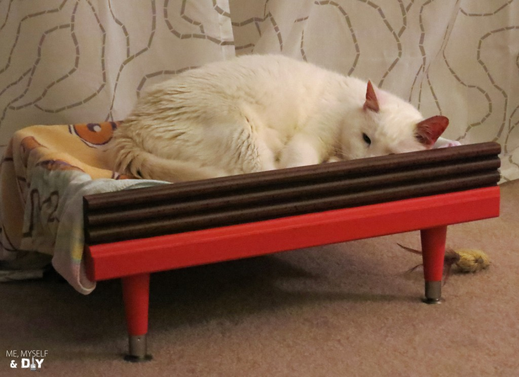 diy-kitty-bed-upcycle