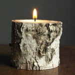 Birch DIY Candle