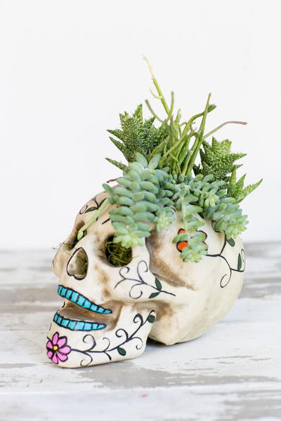 Easy Skull Centerpiece