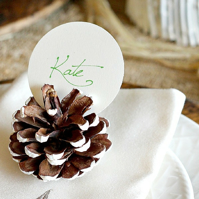 Pretty Easy Pine Cone Place Card Holders