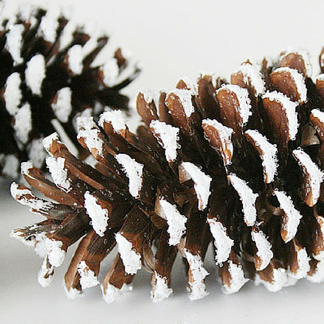 Breathtaking Frosted Pinecone Décor