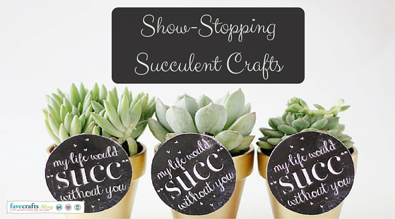 Show-Stopping Succulent Crafts