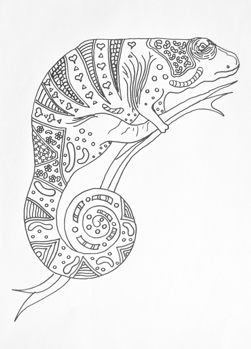 Charming Chameleon Coloring Page Download