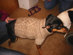 Himalayan Dog Sweater