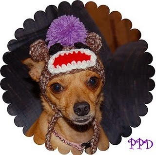 monkey hat Does Your Pet Wear Clothing?