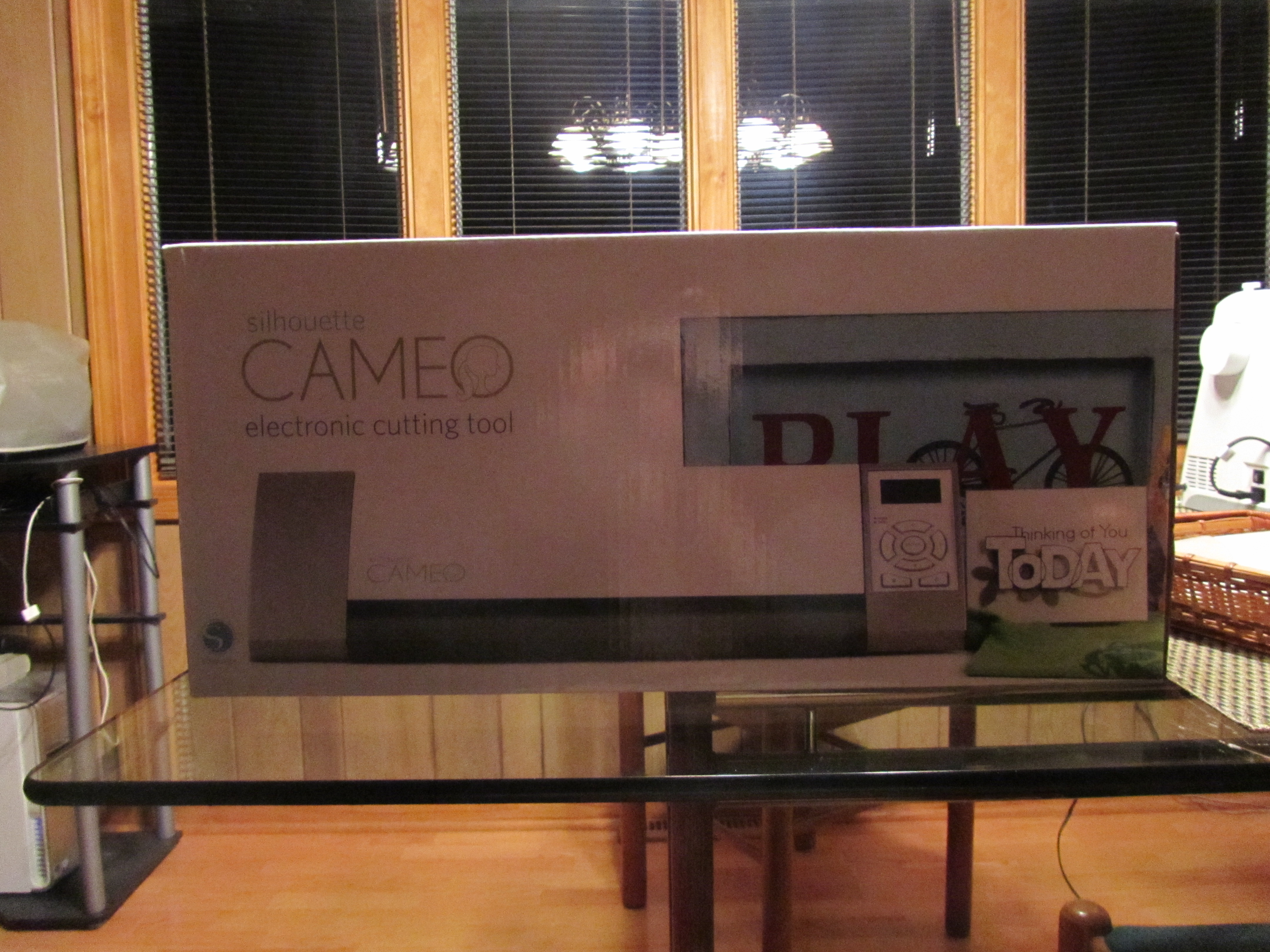 IMG 1391 Silhouette Cameo Giveaway & Paper Lantern Tutorial
