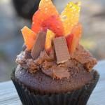 Campfire-Cupcakes