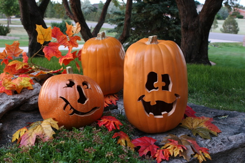 browse No Carve Pumpkin Decorating Ideas + Pumpkin Decorating Contest!