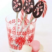 Bite Size Chocolate Spoons Edible Craft