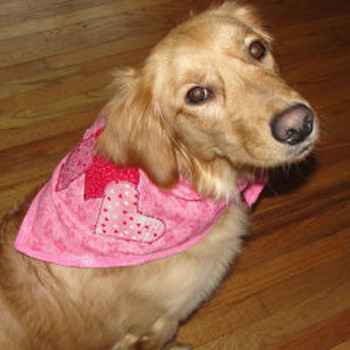 Puppy Love Bandana