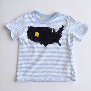 utah state shirt State Crafts: DIY Craft Projects for Your Home State