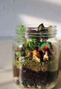 terrarium Make Christmas Gifts That Look Expensive (But Arent)