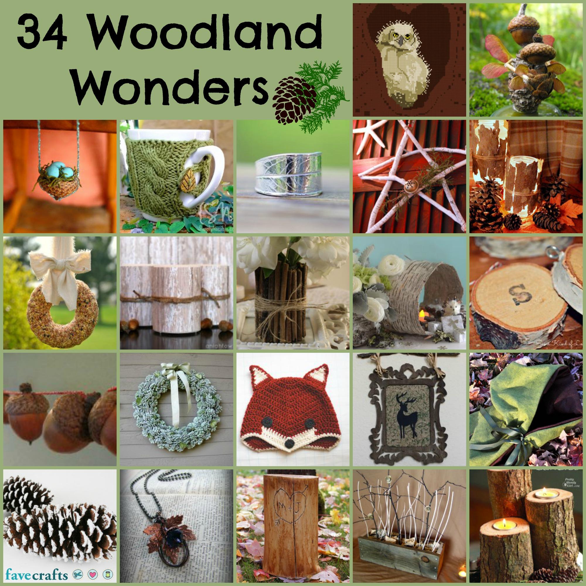 woodland wonders 34 Woodland Wonders