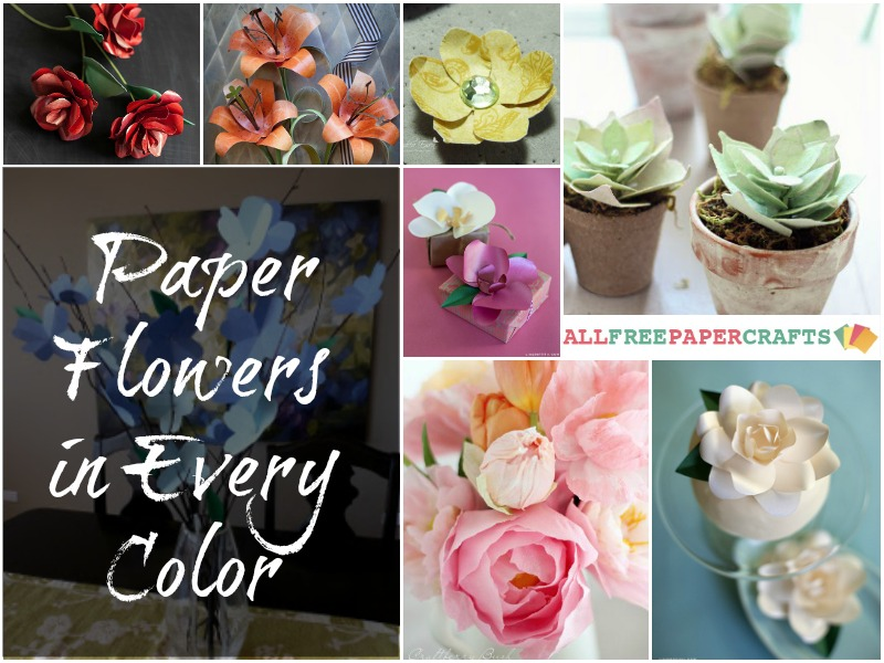 DIY Paper Flowers in Every Color Across the Spectrum: DIY Paper Flowers in Every Color
