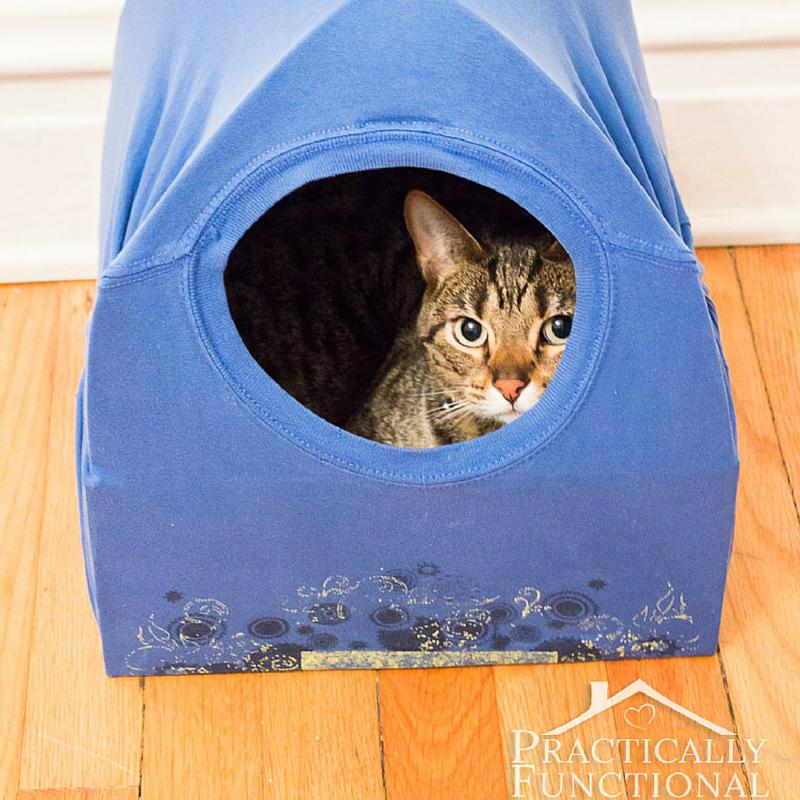 diy-cat-bed-tent