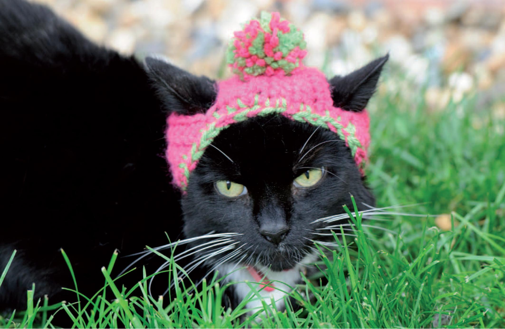 Black Cat Slouch Hat - Free Crochet Cat Hat Pattern - Persia Lou | 1387x2126