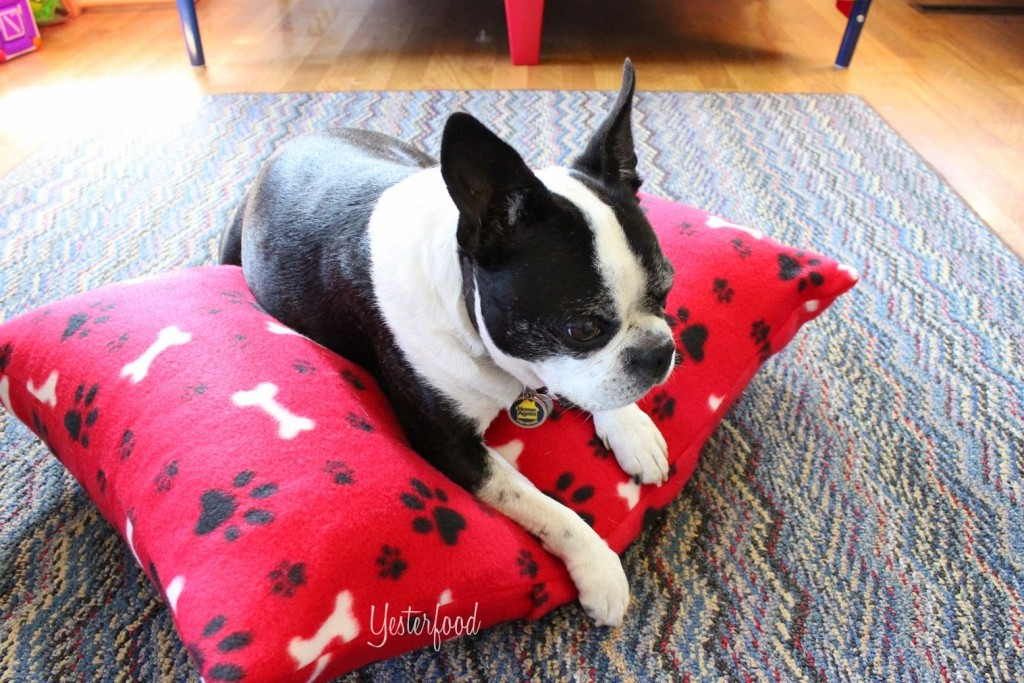 diy-dog-bed-fleece-pillow