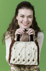 Cable Purse. This image courtesy of Caron Yarns.