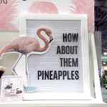 Flamingos and Pineapples